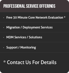 Rhino Networks Professional Services